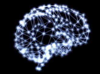 campo neural